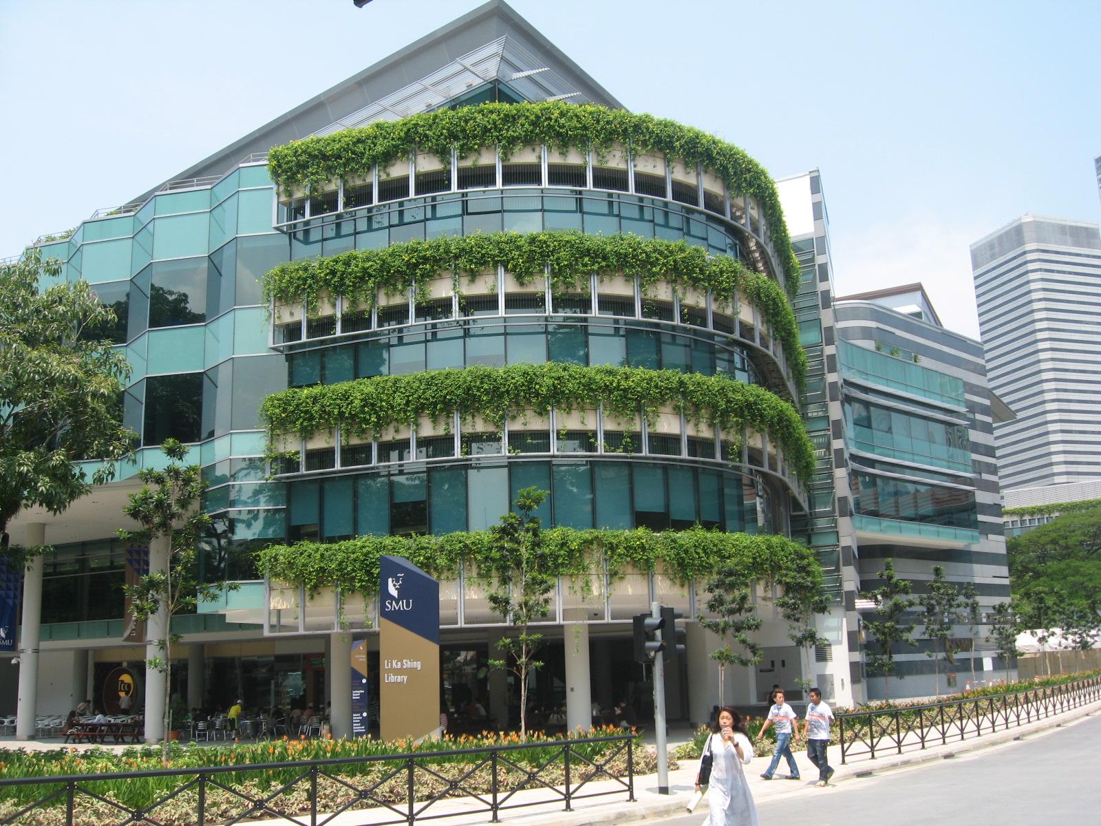 singapore management university application status