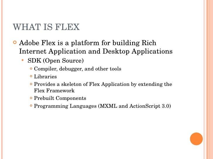 rich internet applications in internet programming