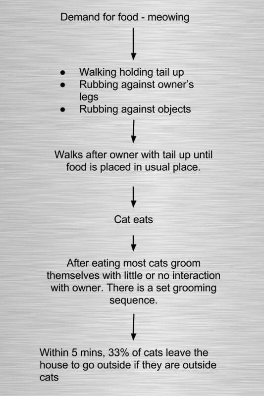 principles & applications of domestic animal behavior