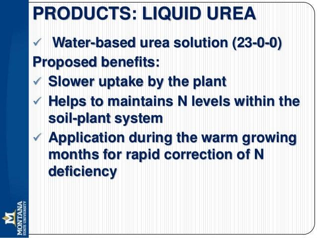 foliar urea application for protein in wheat